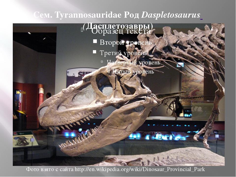 Сем. Tyrannosauridae Род Daspletosaurus (Дасплетозавры) Фото взято с сайта ht...
