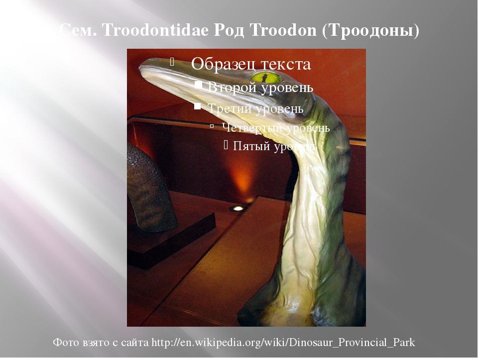 Сем. Troodontidae Род Troodon (Троодоны) Фото взято с сайта http://en.wikiped...