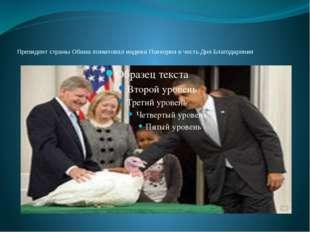 Президент страны Обама помиловал индюка Попкорна в честь Дня Благодарения