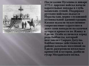 После казни Пугачева в январе 1775 г. царские войска начали карательные поход