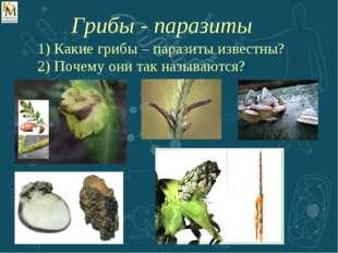 Какие грибы – паразиты известны? Почему они так называются? Грибы - паразиты