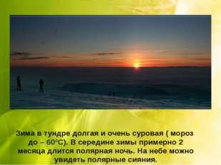Зима в тундре долгая и очень суровая ( мороз до – 60°С). В середине зимы прим