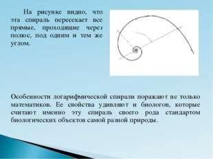 Особенности логарифмической спирали поражают не только математиков. Ее свойст