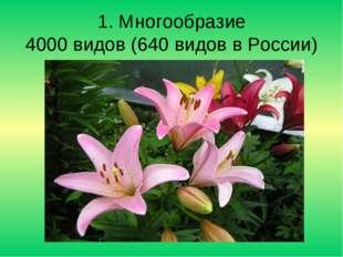 1. Многообразие 4000 видов (640 видов в России)