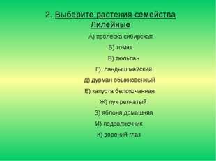 2. Выберите растения семейства Лилейные А) пролеска сибирская Б) томат В) тюл
