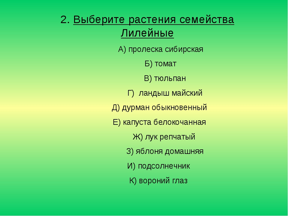 2. Выберите растения семейства Лилейные А) пролеска сибирская Б) томат В) тюл...