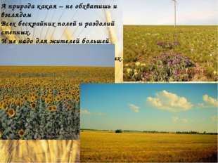 А природа какая – не обхватишь и взглядом Всех бескрайних полей и раздолий с