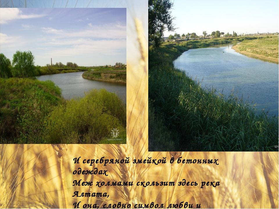 И серебряной змейкой в бетонных одеждах Меж холмами скользит здесь река Алта...