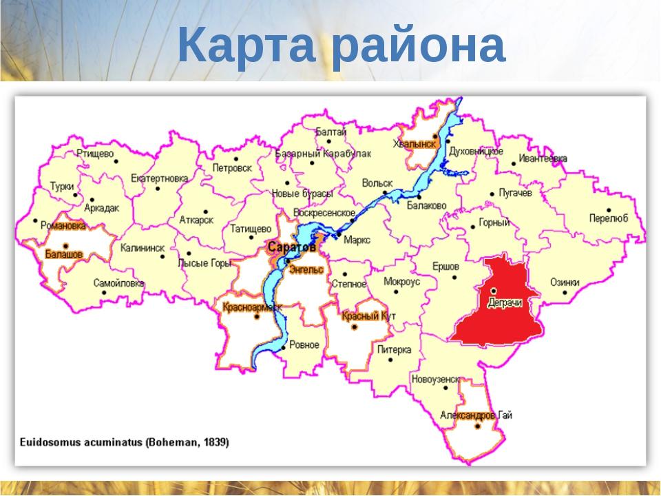 Карта района