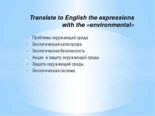Translate to English the expressions with the «environmental» Проблемы окруж