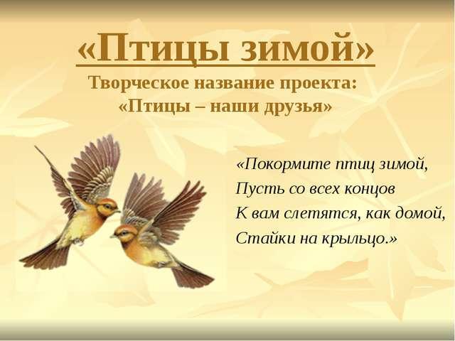 «Птицы зимой» Творческое название проекта: «Птицы – наши друзья» «Покормите п...