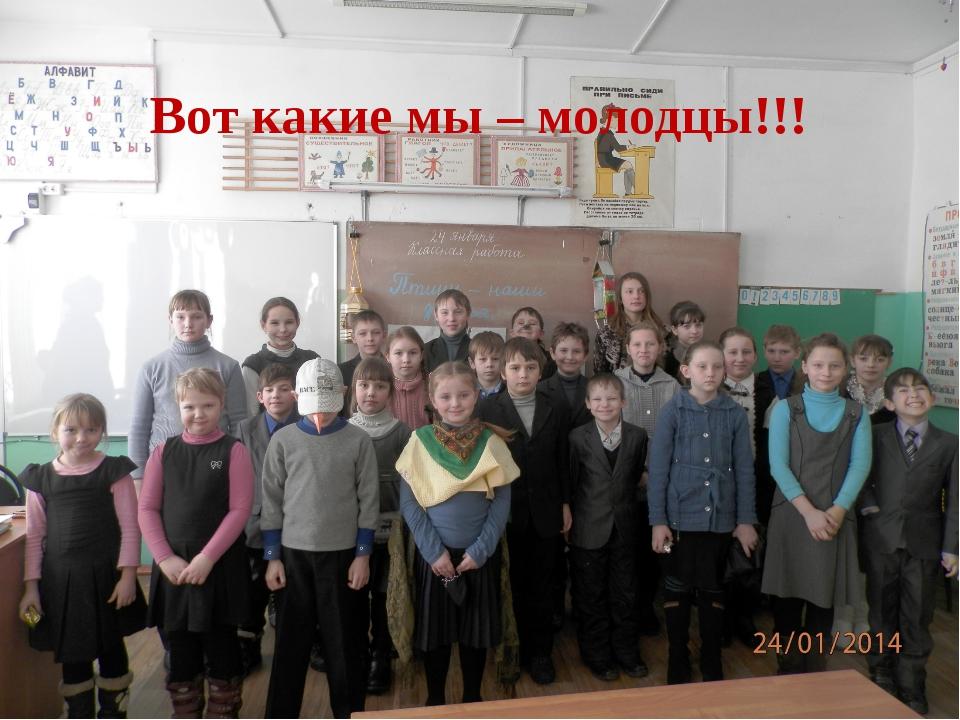 Вот какие мы – молодцы!!!