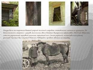 Вокруг была она огорожена богатой узорной железной изгородью, изготовленной
