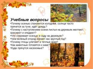 Учебные вопросы Почему осенью становится холоднее, солнце часто прячется за