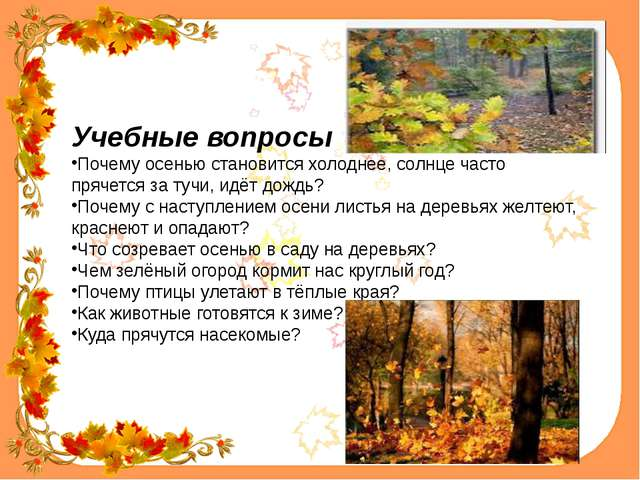 Учебные вопросы Почему осенью становится холоднее, солнце часто прячется за...