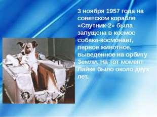 3 ноября 1957 года на советском корабле «Спутник-2» была запущена в космос со