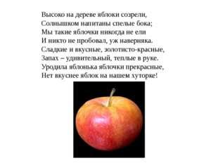 Высоко на дереве яблоки созрели, Солнышком напитаны спелые бока; Мы такие ябл