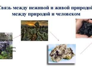 Связь между неживой и живой природой, между природой и человеком