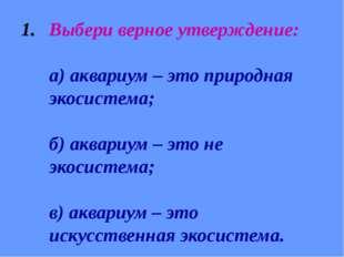 Выбери верное утверждение: а) аквариум – это природная экосистема; б) аквариу