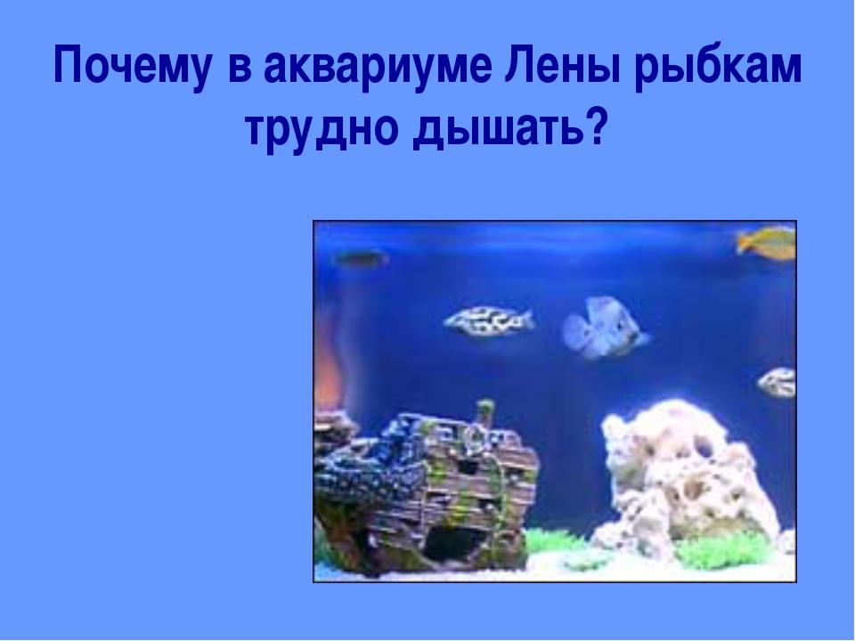 Почему в аквариуме Лены рыбкам трудно дышать?