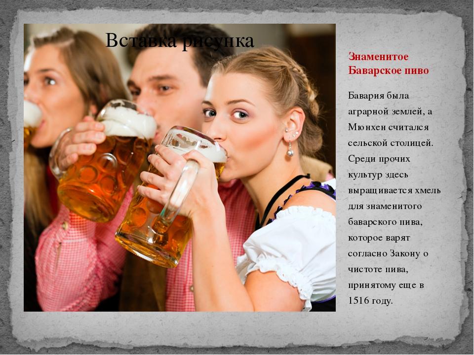 Знаменитое Баварское пиво Бавария была аграрной землей, а Мюнхен считался сел...