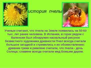 Ученые считают, что пчела на Земле появилась на 50-60 тыс. лет ранее человека