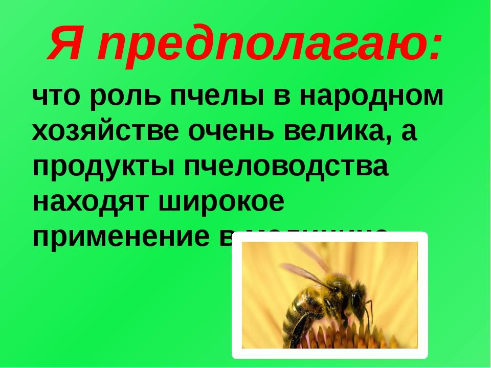 Я предполагаю: что роль пчелы в народном хозяйстве очень велика, а продукты п...