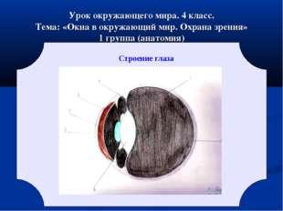 Урок окружающего мира. 4 класс. Тема: «Окна в окружающий мир. Охрана зрения»
