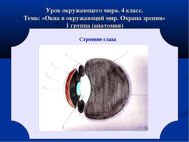 Урок окружающего мира. 4 класс. Тема: «Окна в окружающий мир. Охрана зрения»...