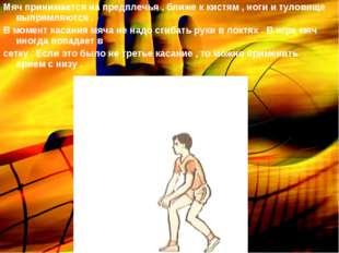 Мяч принимается на предплечья , ближе к кистям , ноги и туловище выпрямляются