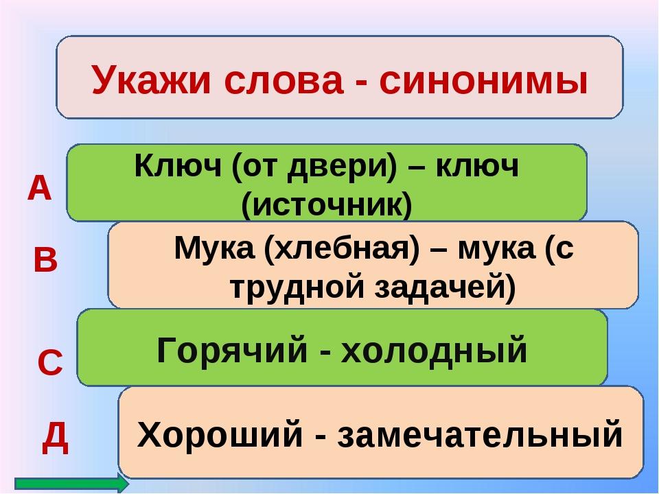 Укажи слова - синонимы Ключ (от двери) – ключ (источник) Мука (хлебная) – мук...