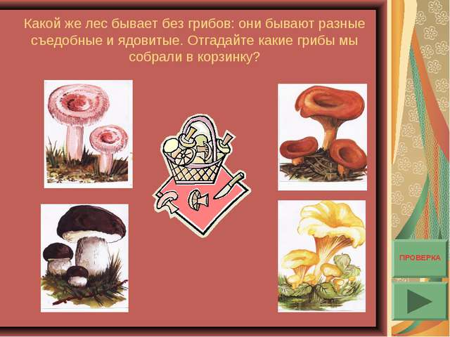 Какой же лес бывает без грибов: они бывают разные съедобные и ядовитые. Отгад...