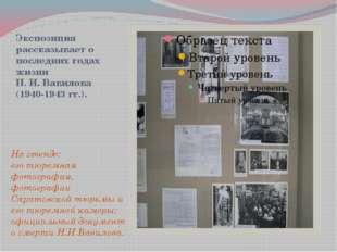 Экспозиция рассказывает о последних годах жизни Н. И. Вавилова (1940-1943 гг.