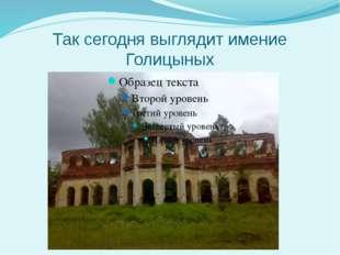 Так сегодня выглядит имение Голицыных
