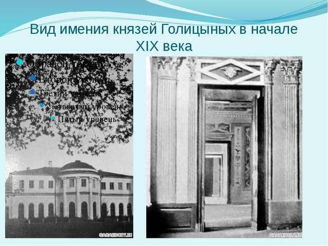 Вид имения князей Голицыных в начале XIX века