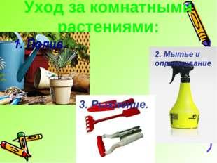 Уход за комнатными растениями:
