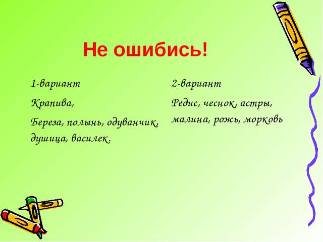 Не ошибись! 1-вариант Крапива, Береза, полынь, одуванчик, душица, василек.2-...