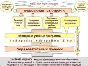 ТРЕБОВАНИЯ СТАНДАРТА Базисный учебный план Фундаменталь- ное ядро содер- жани