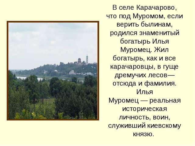 В селе Карачарово, что под Муромом, если верить былинам, родился знаменитый б...