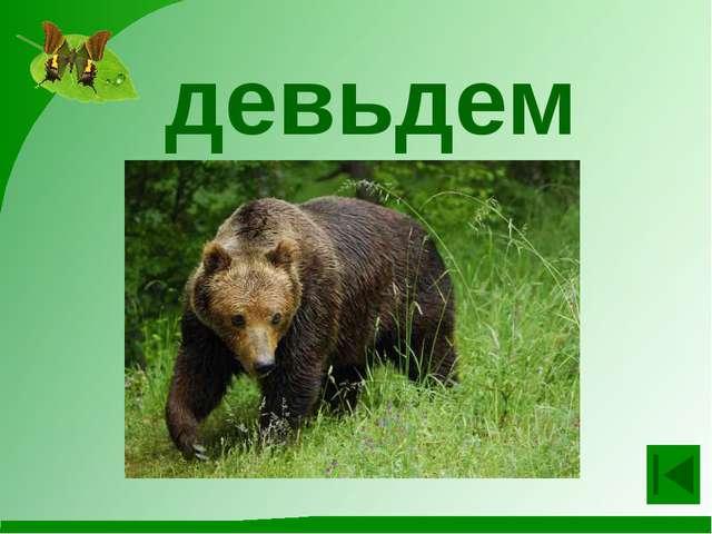 Игра-викторина для учащихся второго класса «Знаешь ли ты животных?»