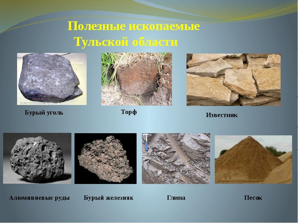 Полезные ископаемые Тульской области Известняки Бурый уголь Торф Алюминиевые...