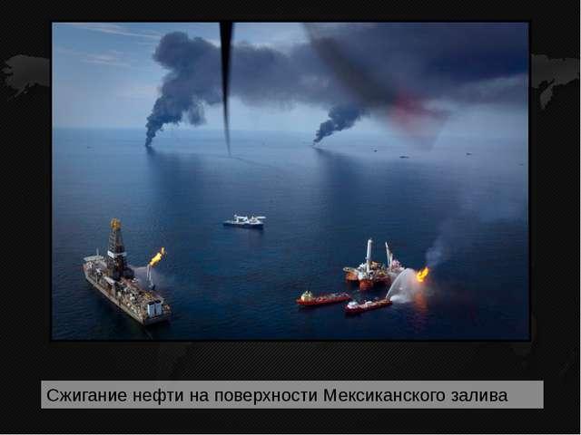 Главным источником загрязнения вод Мирового океана нефтью и нефтепродуктами...