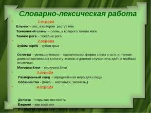Словарно-лексическая работа 1 строфа Ельник – лес, в котором растут ели. Тонк