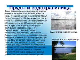 Пруды и водохранилища Кроме естественных поверхностных водных объектов на тер