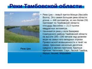 Реки Тамбовской области Река Цна – левый приток Мокши (бассейн Волги). Это са