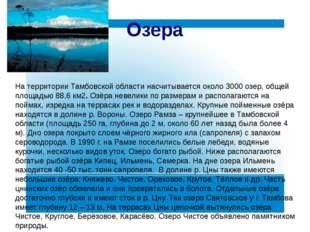 На территории Тамбовской области насчитывается около 3000 озер, общей площадь