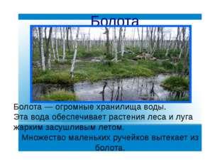 Болота Болота— огромные хранилища воды. Эта вода обеспечивает растения леса