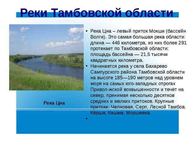Реки Тамбовской области Река Цна – левый приток Мокши (бассейн Волги). Это са...