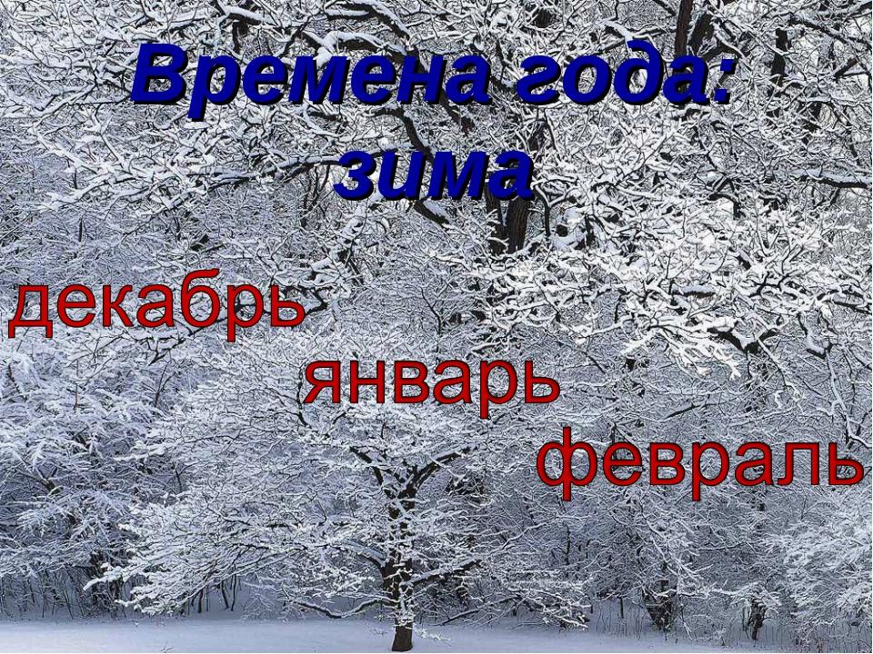 Времена года: зима