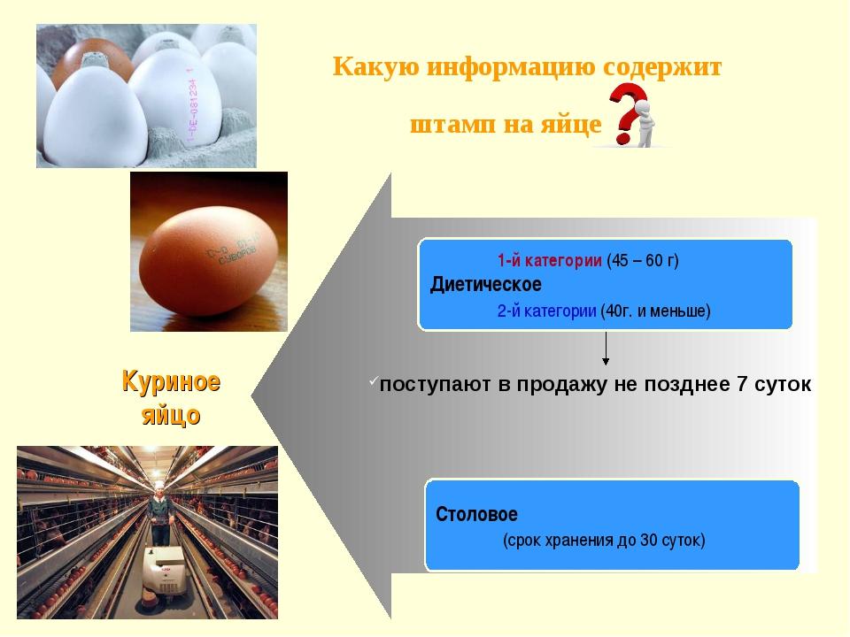 Какую информацию содержит штамп на яйце поступают в продажу не позднее 7 сут...